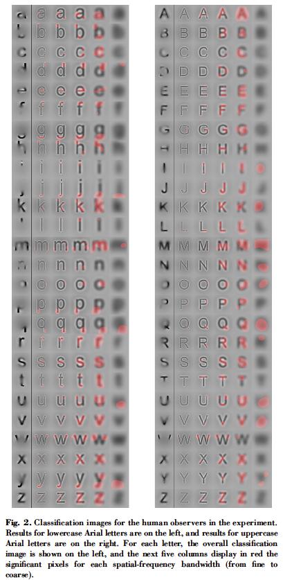 Roman letter features